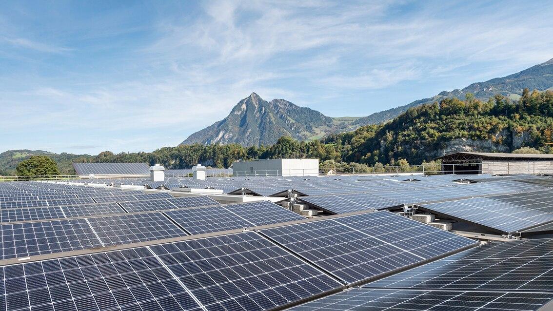 LT_Solarpannels_Unternehmensverantwortung.jpg